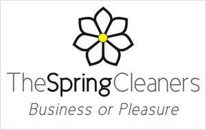 Spring Cleaners, The