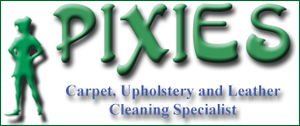 Pixies Cleaning