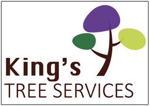 King's Tree Services Ltd